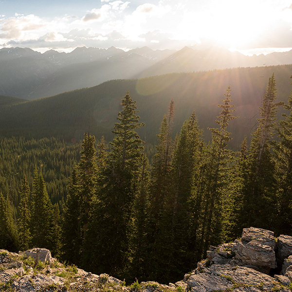 Mountain Scenic Backdrop